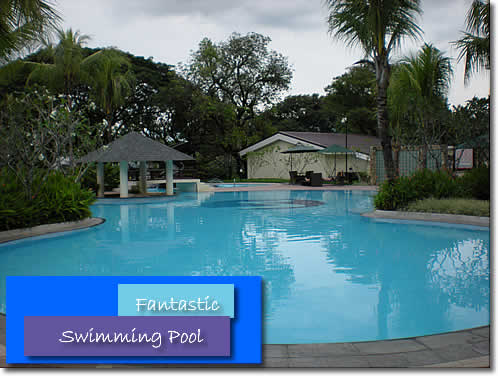 vida_pool