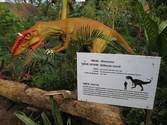 dinosaurs_island_allosaurus