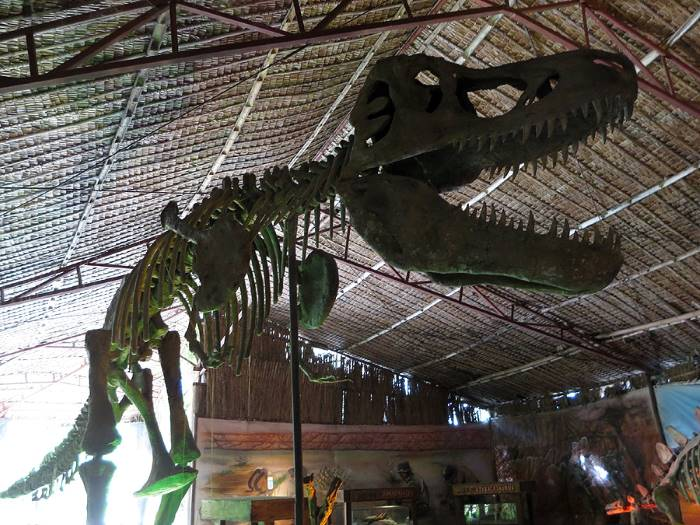 dinosaurs_island_tyrannosaurus_bones